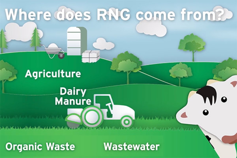 Where does RNG come from?